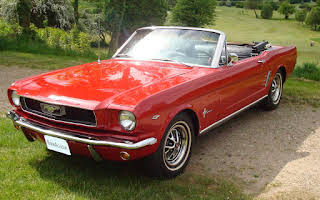 Ford Mustang Convertable Rent Noord Holland